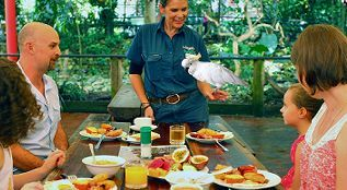 Kuranda Half Day Tours - Breakfast With The Birds
